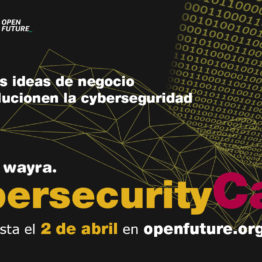 Cybersecurity Call